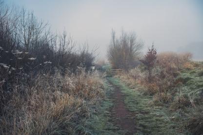 frosty ground