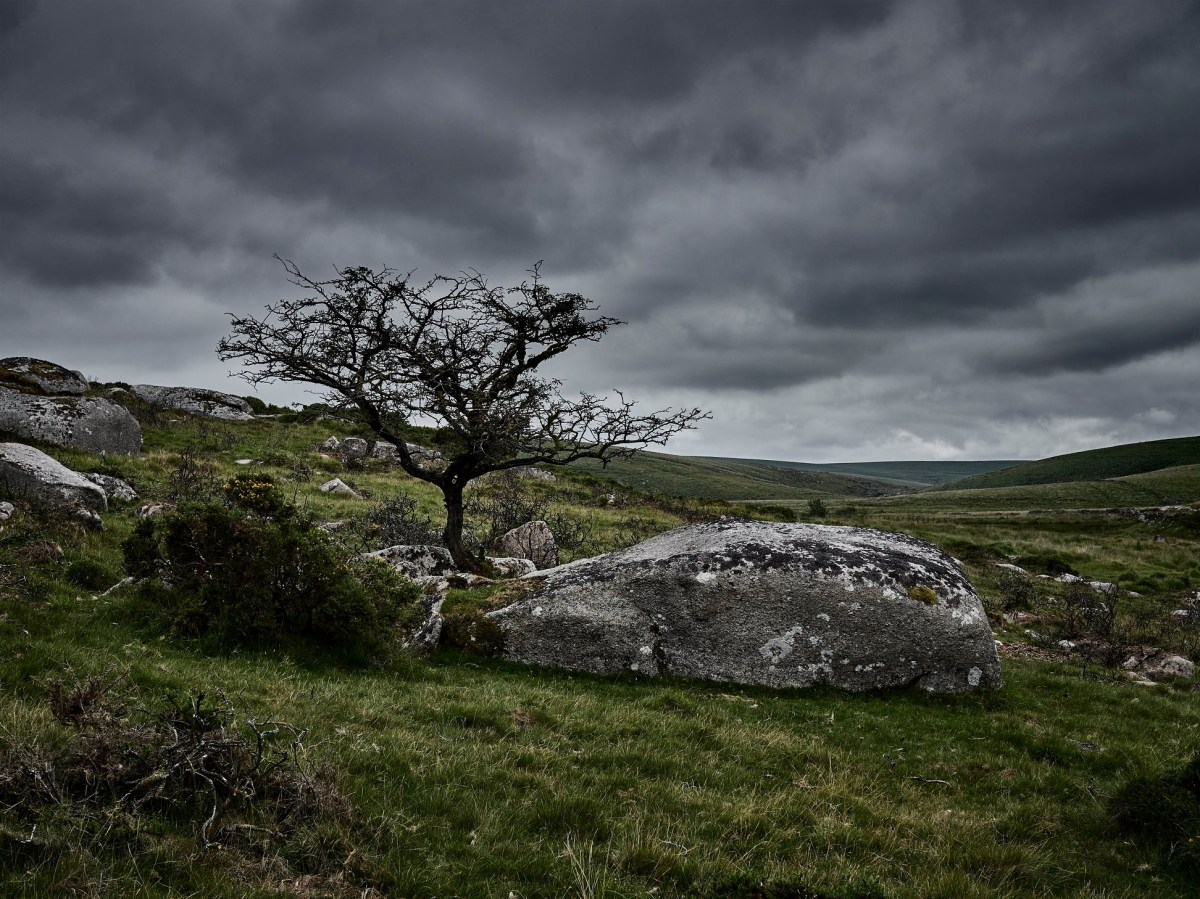 A welcome return to Dartmoor